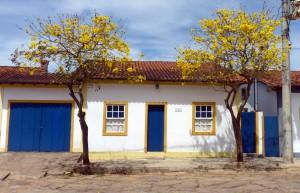 Ipês in Tiradentes